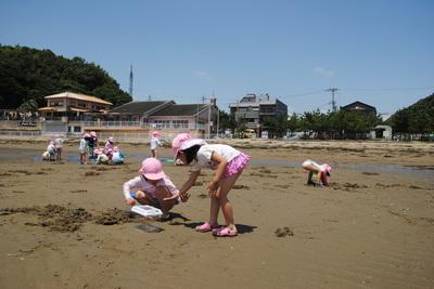 干潟遊び(年中)