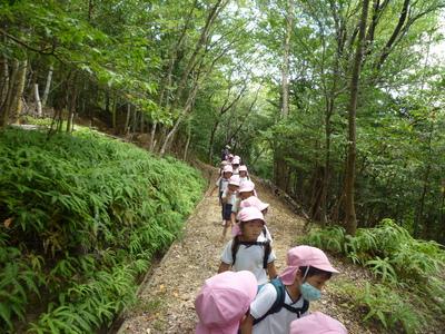 竹の小径(年中)