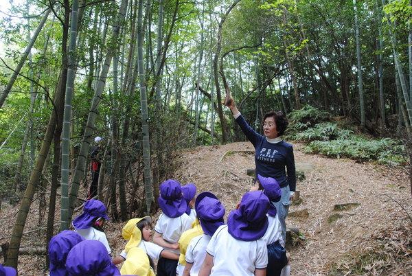 竹の小径サムネイル