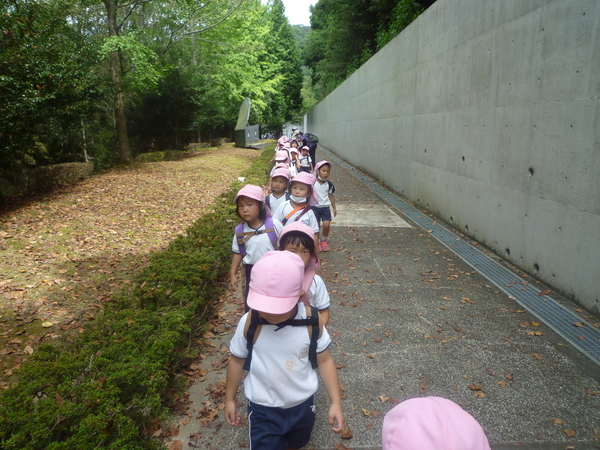 竹の小径(年中)サムネイル
